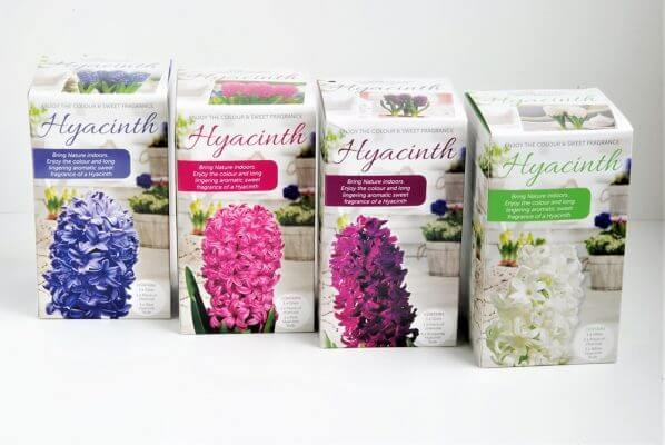 10 1 598x400 Best Horticultural Packaging Design Centre – Greenlife by immij