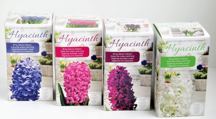 10 1 e1537239691622 729x400 5 Tips for Stand out Horticultural Packaging Design