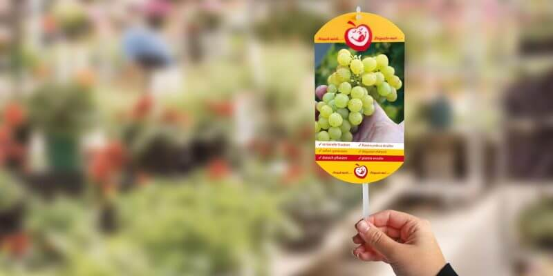 6 800x400 How to Makes Plant Labels More Attractive with Lenticular Printing?