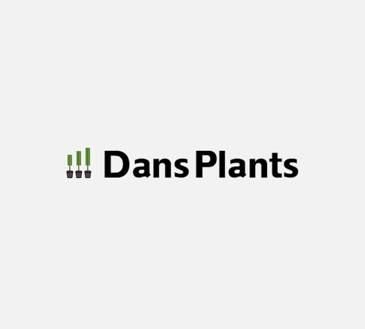 dp Dans Plants   Bird of Paradise Label