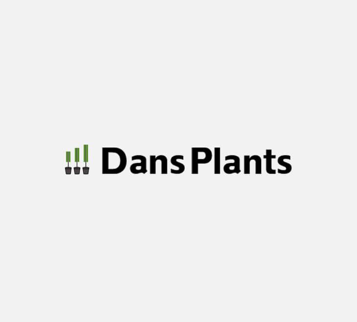 dp Dans Plants   Bird of Paradise Label