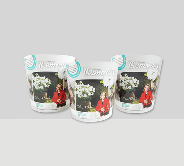 pd Horticultural Packaging Design