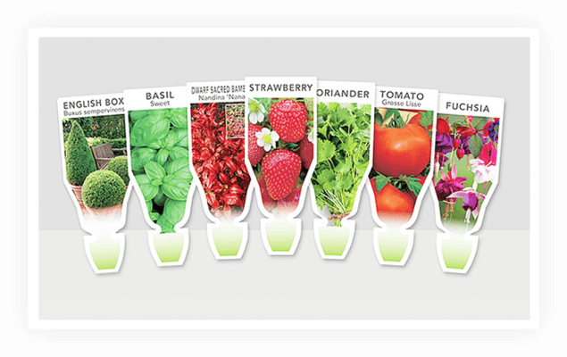 a1 635x400 Labels that Move You: Choosing Lenticular Labels for Versatile Plants
