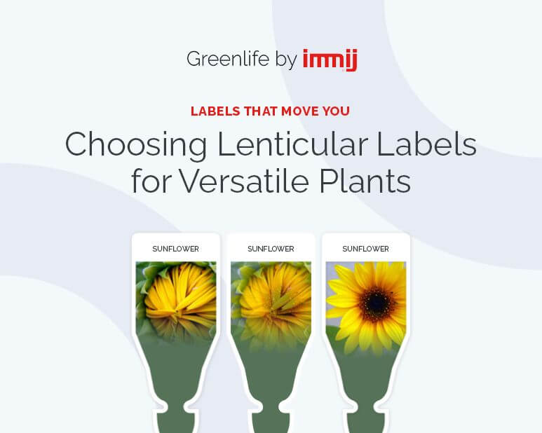 Choosing Lenticular Labels