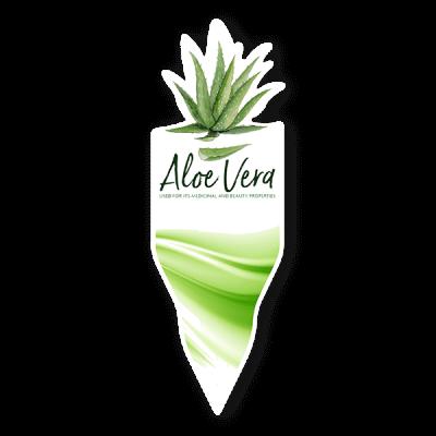 av33 400x400 Dans Plants   Aloe Vera Label