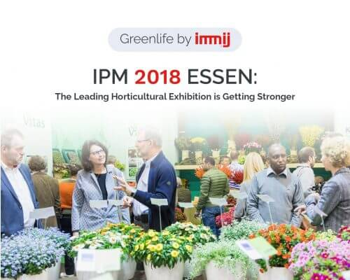 ipm 2018 773x618 ver 2 500x400 Greenlife by Immij