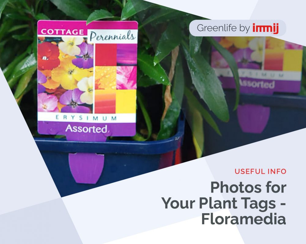Photos for your plant tags - Floramedia