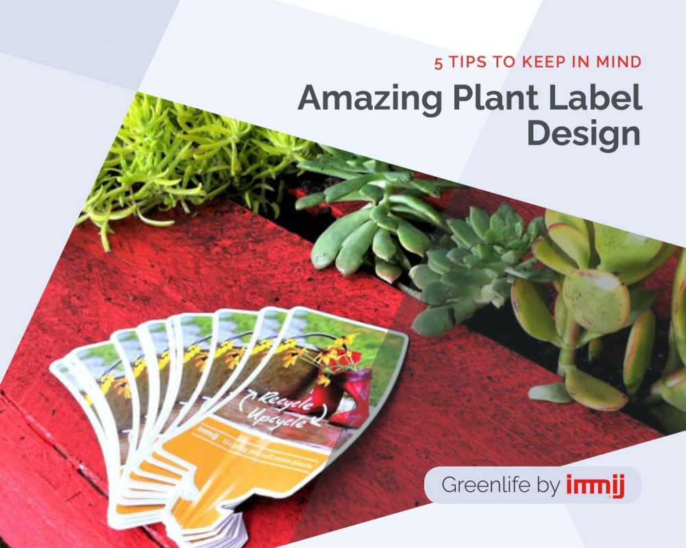 Amazing Plant Label Design: 5 Tips to Keep in Mind