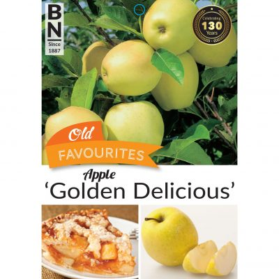 apple golden delicious 400x400 How Plant Wholesalers Can Best Market Roses, Camellias, and Flowering & Deciduous Fruit Trees