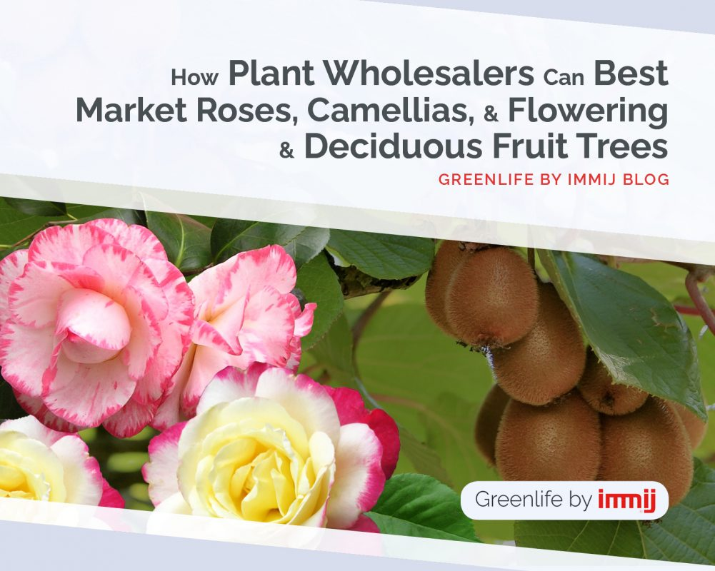 How Plant Wholesalers Can Best Market Roses, Camellias, and Flowering & Deciduous Fruit Trees