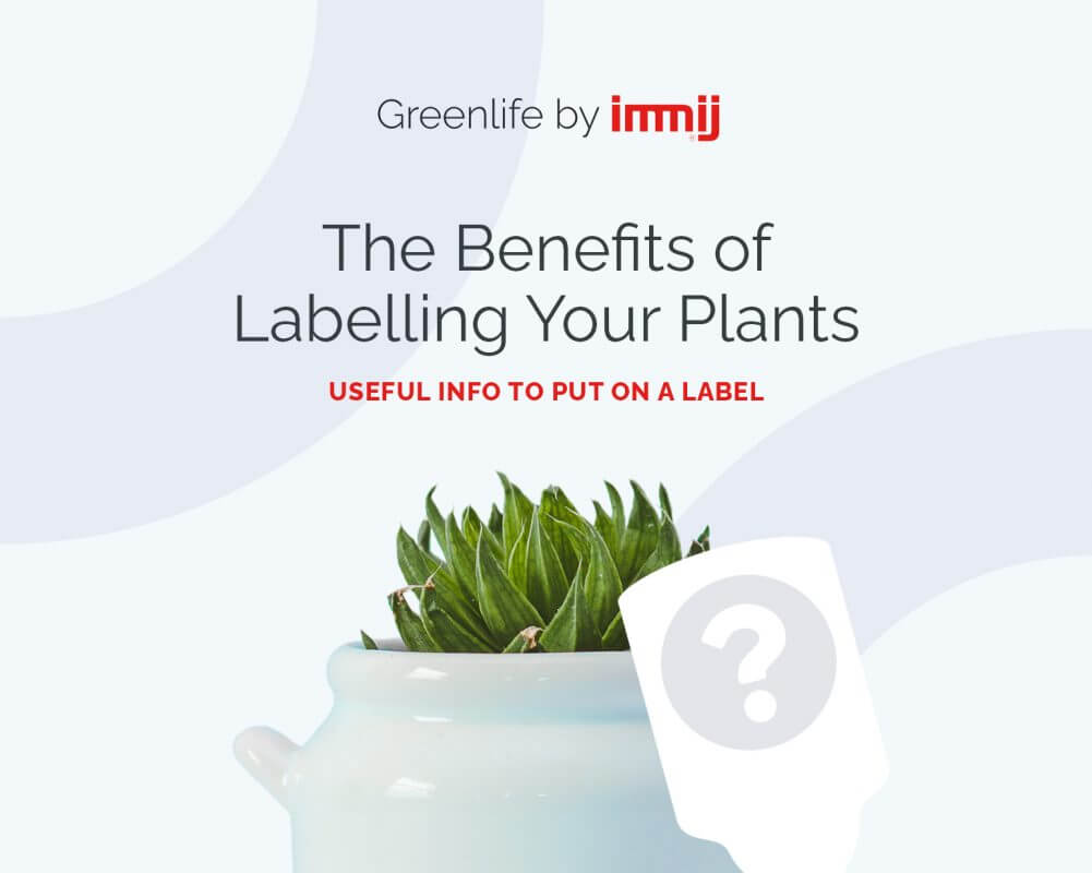 The Benefits of Labelling Your Plants: Useful Info to Put on a Label
