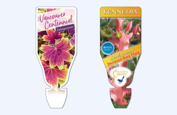 greenlife immij custom florastik 2 615x400 The Benefits of Florastiks for Your Wholesale Nursery
