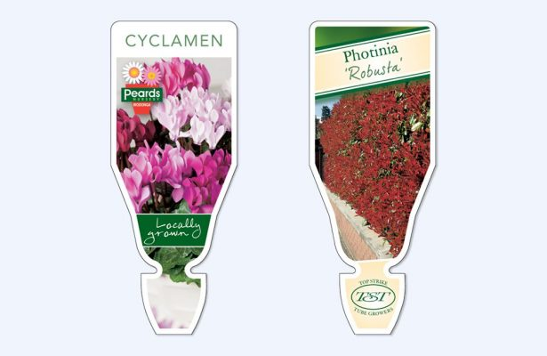 greenlife immij custom florastik 3 615x400 Plant Label Options for Indoor Plants