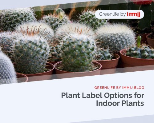 22 plant label options indoor plants 773x618 x2 500x400 Greenlife by Immij