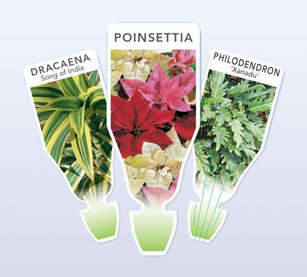 plant tags 444x400 Plant Label Options for Indoor Plants