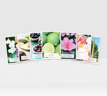 plant tags.2 444x400 Tips for Marketing for The Horticultural Industry
