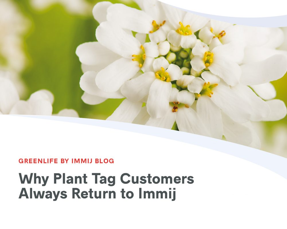 Why Plant Tag Customers Always Return to Immij
