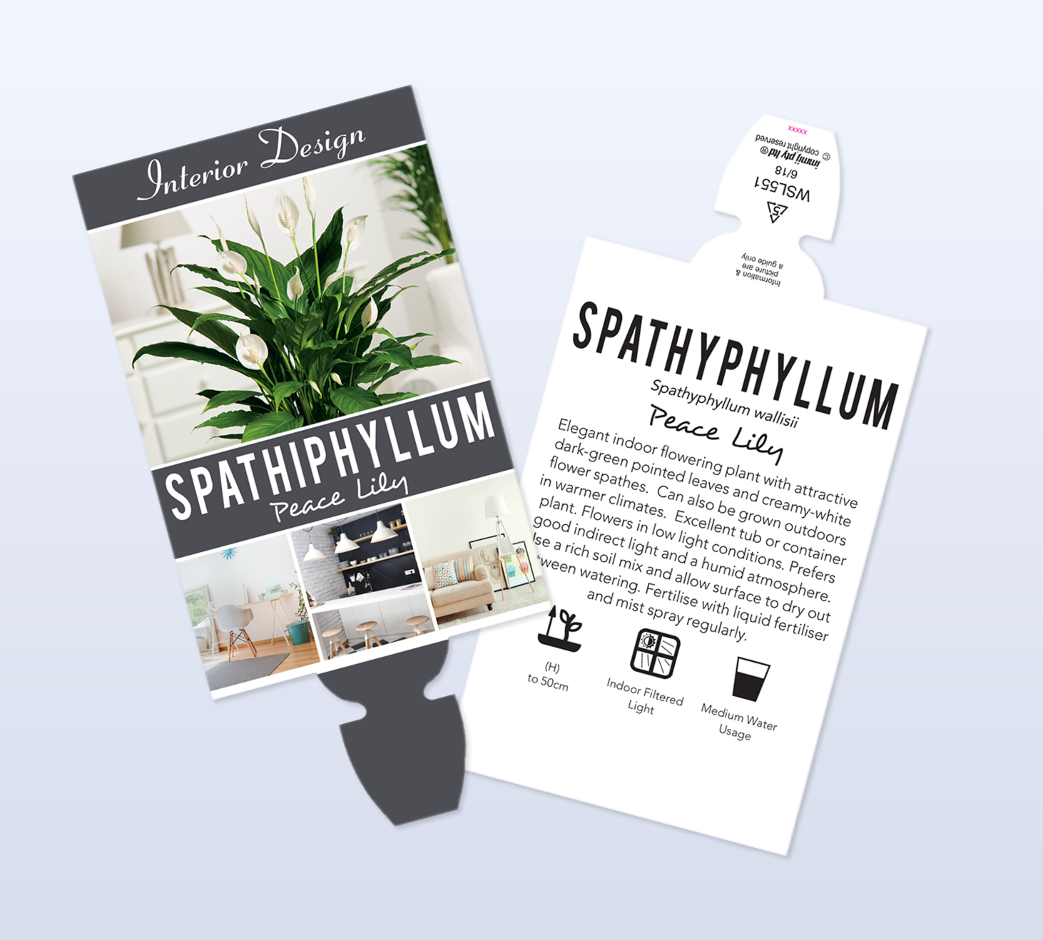grenlife page featured image spathiphyllum x2 res Plant Labels for Indoor Plants