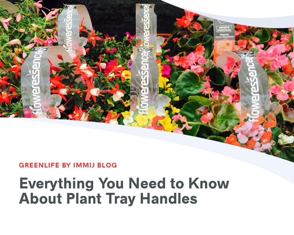 Everything You Need to Know about Plant Tray Handles