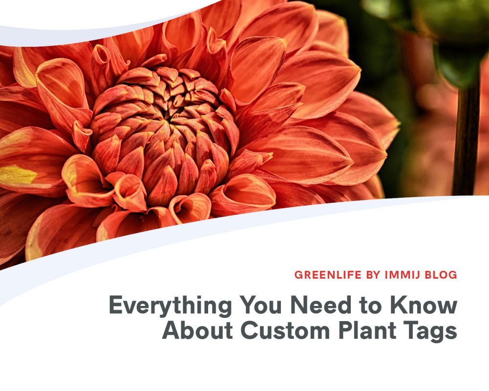 Everything You Need to Know About Custom Plant Tags