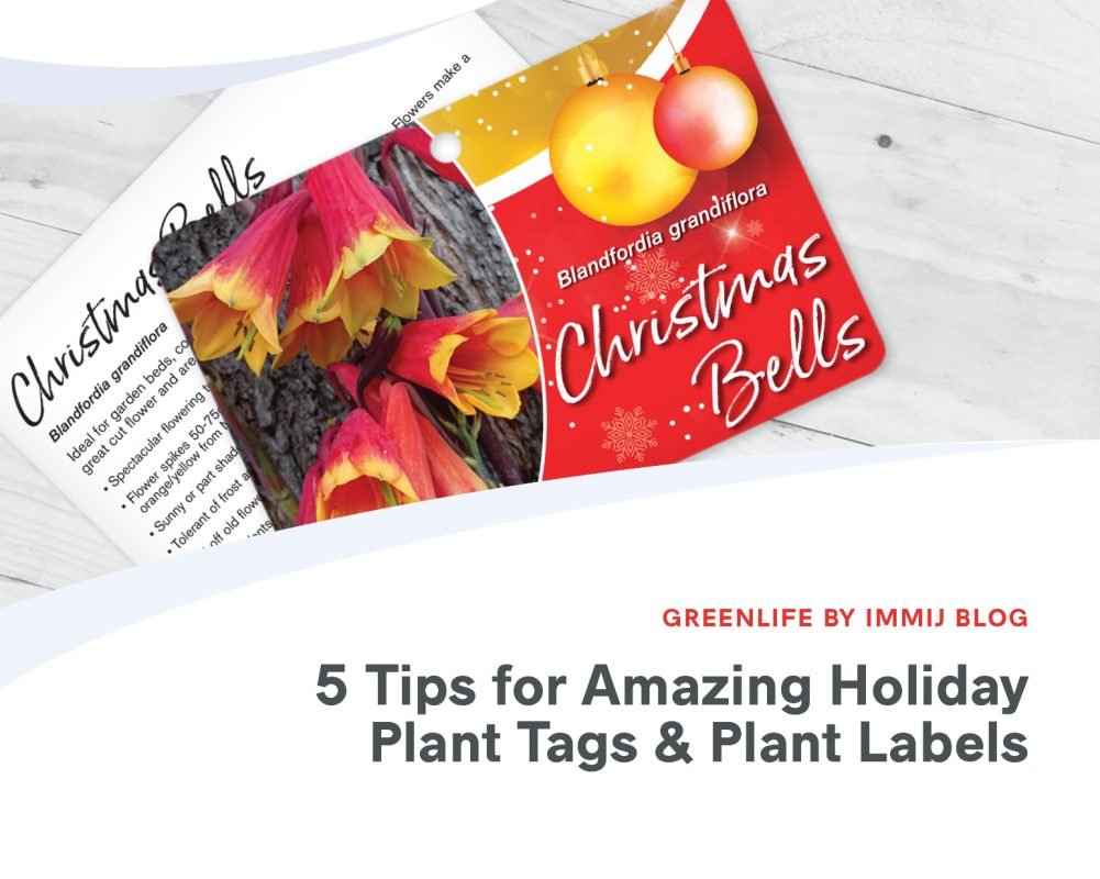 5 Tips for Amazing Holiday Plant Tags and Plant Labels