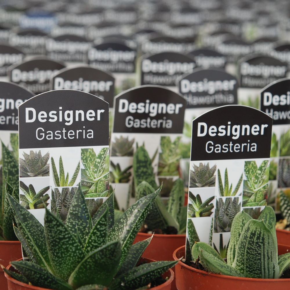 greenlife labels 1 Plant Tags