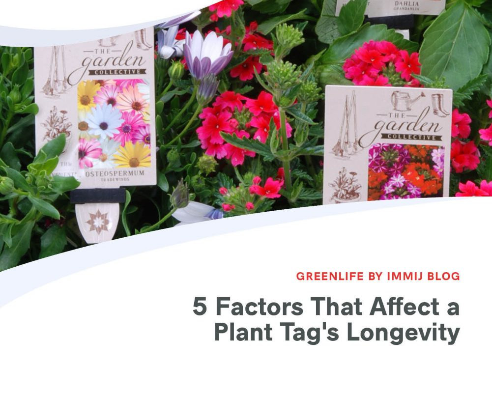 5 Factors That Affect a Plant Tags Longevity